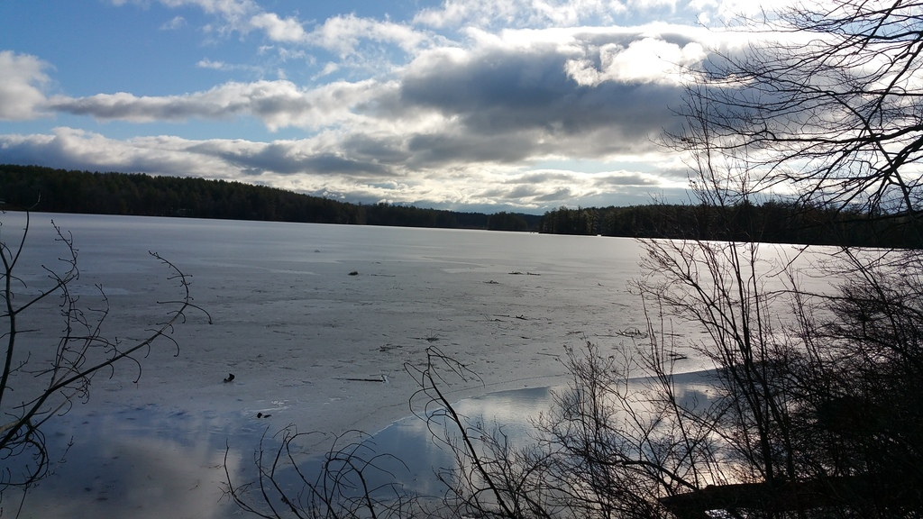 Late winter (almost spring) on White Oak Pond